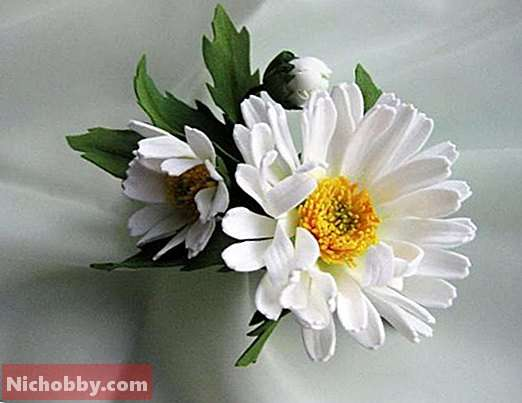 Master class: chamomile from foamiran do it yourself (photo)