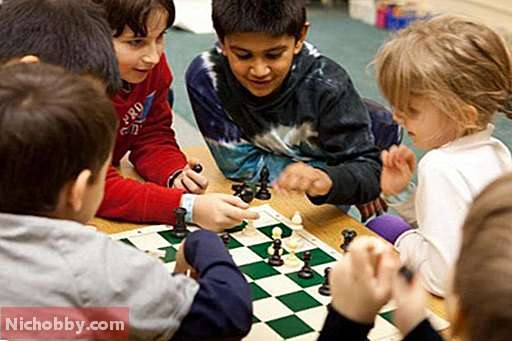 How to teach a child to play chess?  Figures in chess.  How to play chess: rules for children, Board games - 2019
